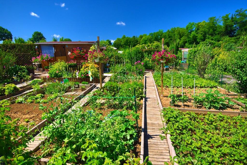 Am Nager Son Jardin Les Cl S Pour R Ussir Plan De Maison